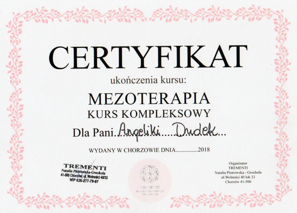 dudek55-min-1024x733.jpg